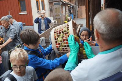Kinder- und Jugendgruppe des NSV Muschenheim keltert Äpfel