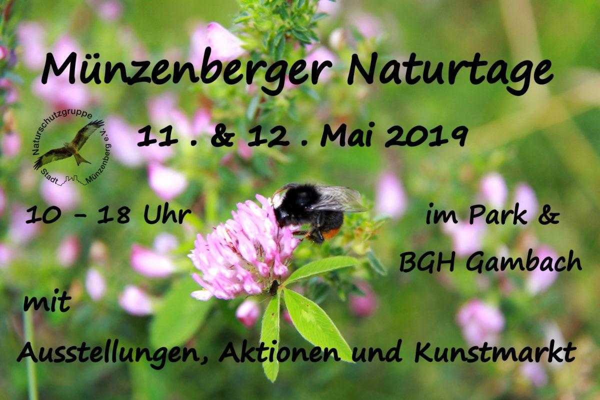 Münzenberger Naturtage am 11. + 12.05.19