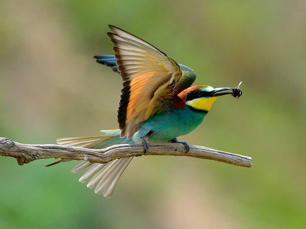 Lasst euch inspirieren von unserer schönen Natur!